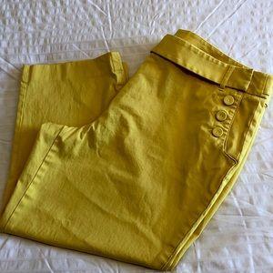 Talbots Capri Pants - Size 18